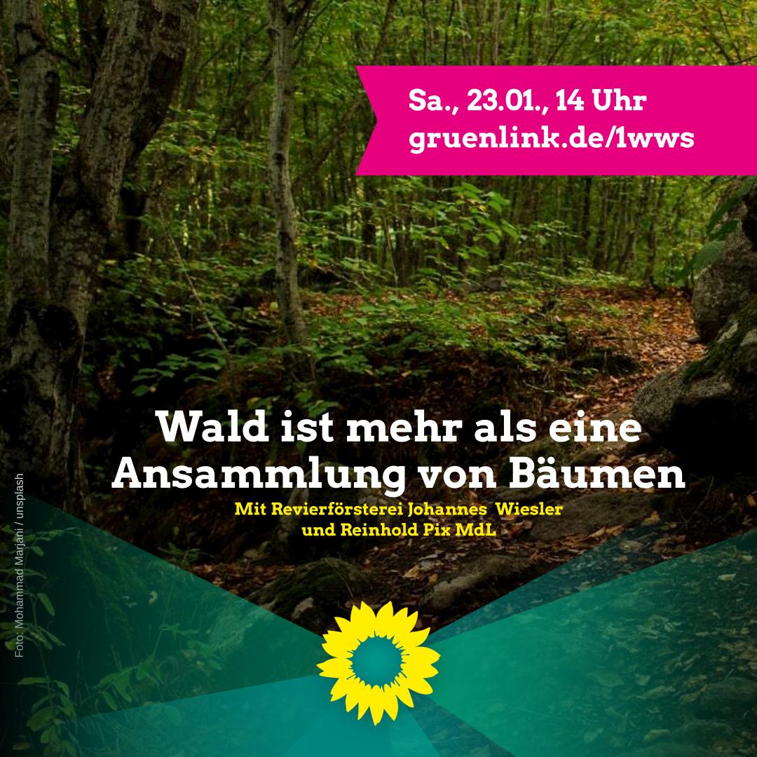 """Virtuelle Begehung des Biengemer Waldes"""