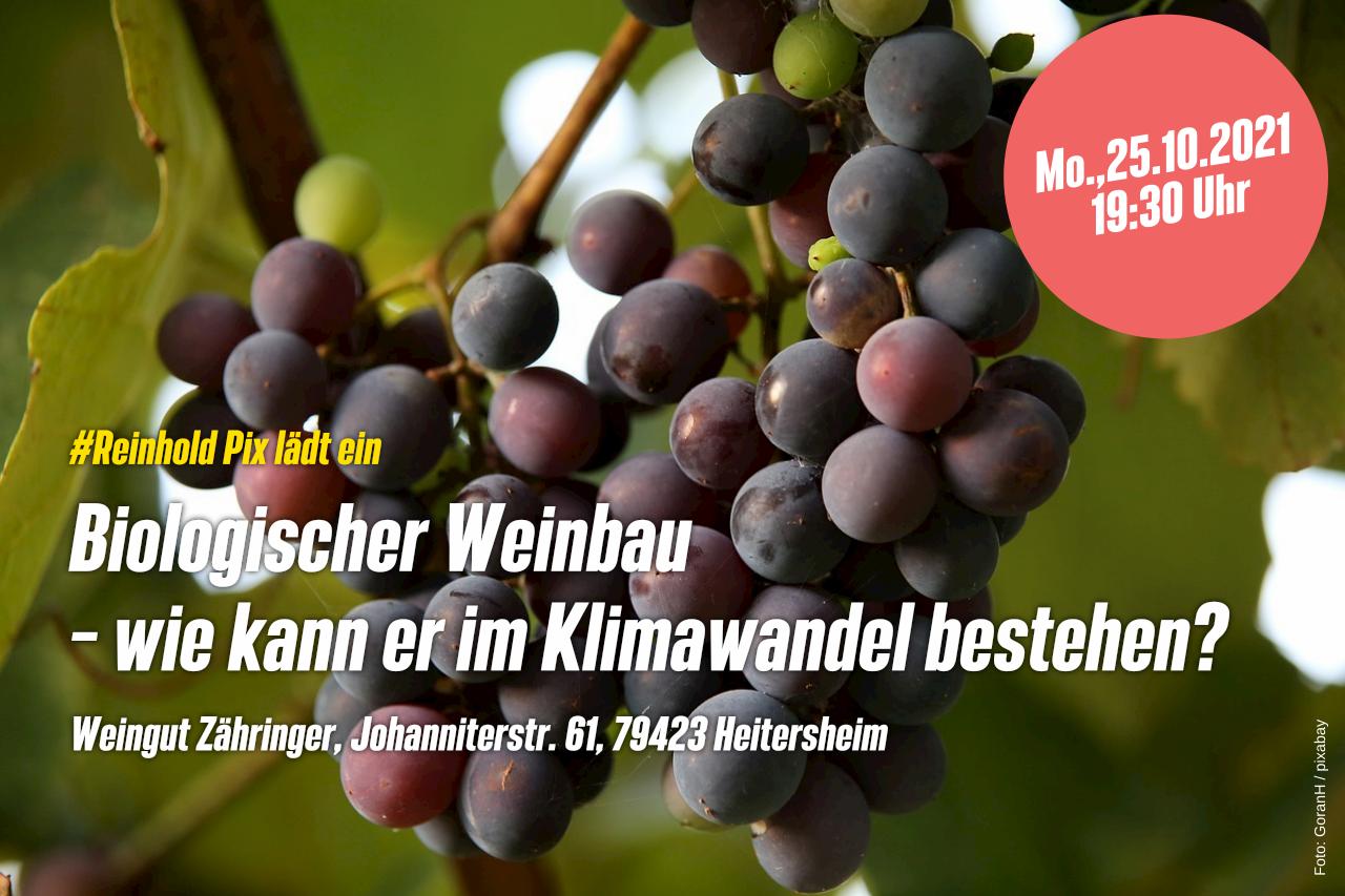 """""""Biologischer Weinbau – wie kann er im Klimawandel bestehen?"""""""