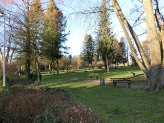 CIMG0418 park